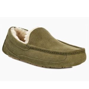 nwb // ugg men's ascot slippers